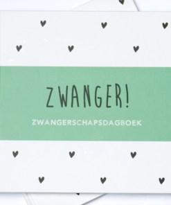 Zwangerschapsdagboek groen, zwanger, huisjeno56, liefsvanlauren.nl