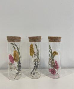 droogbloemen groot formaat, droogbloem in glazen buisje, liefsvanlauren.nl