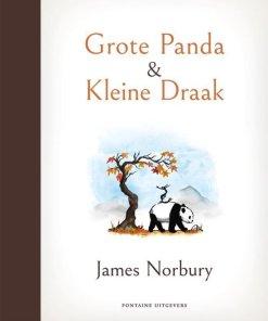 Grote panda en kleine draak, filosofisch, boek, James norbury, liefsvanlauren.nl