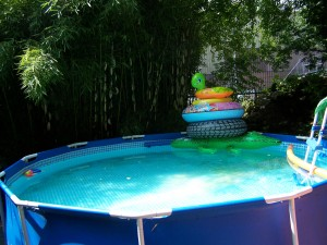 dag 8 zwembad 100_2416