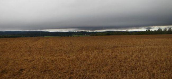 Zweden,goud,luchten,regen,onweer