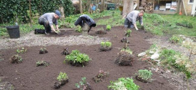 tuinmannen,tuin,plantjes,2015,voorjaar,grote schoonmaak