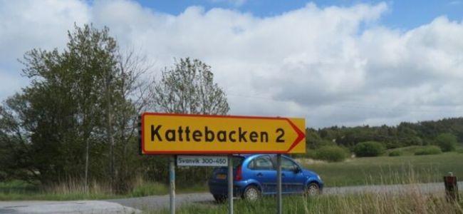 Zweden,Tjörn,Kattebacken,2015