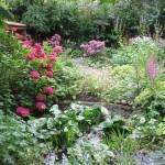 tuin,Friesland,juli 2015