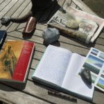 MP's,schrijven,bloggen