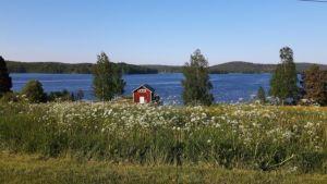 Zweden,Tolvsbo,Tunkarlsbo,meer,zon,warm,mei,2016