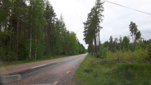 Zweden,lange lege wegen,mei,2016