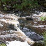 Zweden,Skultuna,rivier,mei,2016
