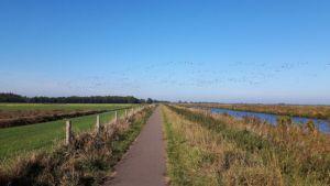Friesland,Opsterlandse Compagnonsvaart,natuurgebied