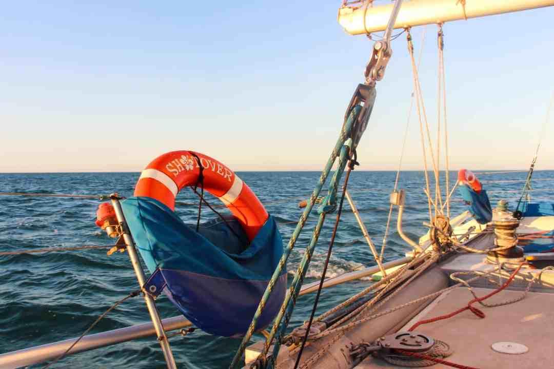 Shark Bay Boottocht