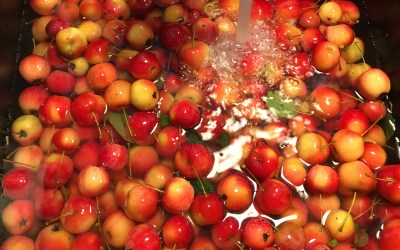 Crab Apple and Hot Pepper Jelly