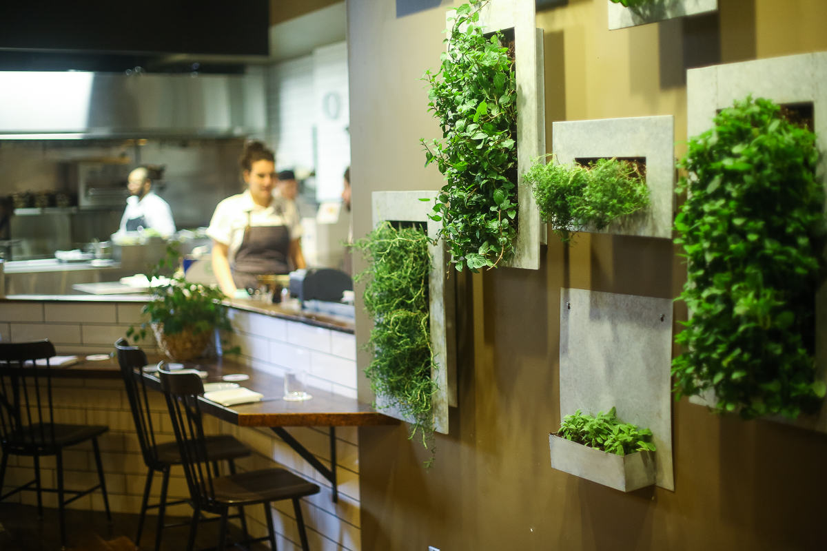 Green Living Berlin astonishing build your own living wall photos best inspiration