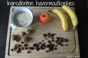 ingrediënten havermoutkoekjes