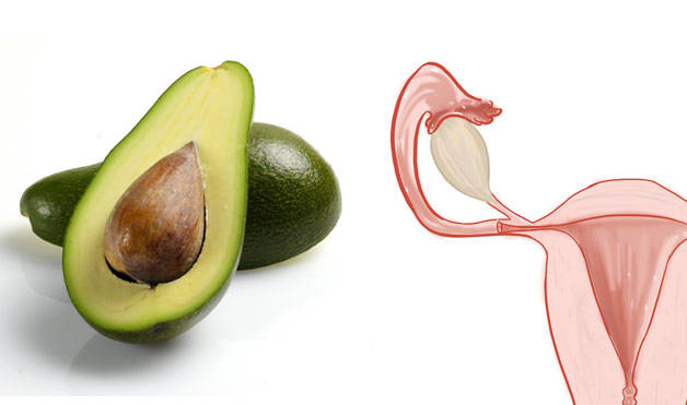 Avocados-UterusFoods-That-Look-Like-Body-Parts