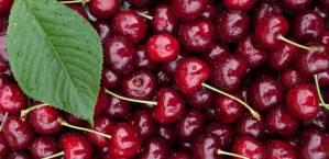 summer-superfoods-cherries