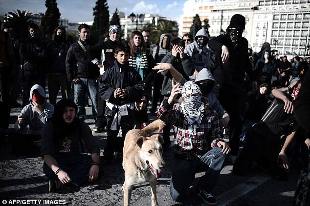 04-The Story of Loukanikos and Other Greek Riot Dogs
