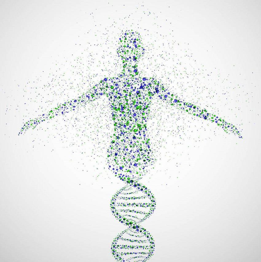 DNA Diet Test