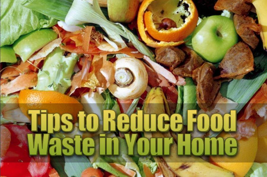 Tips to Reduce Food Waste in Your Home