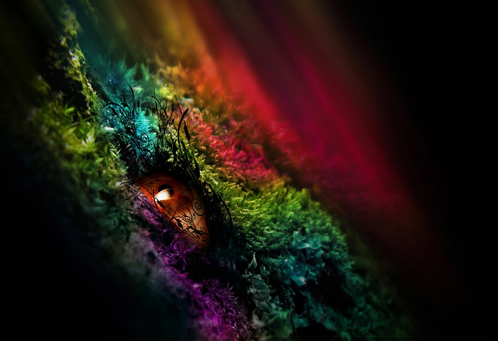 Colors Help you Manifest your Desires