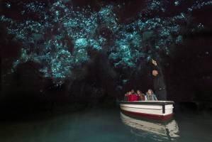 Waitomo Glowworm Caves, Waitomo Caves, New Zealand
