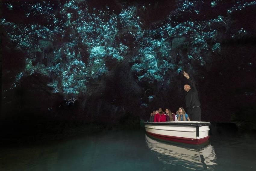 Waitomo Glowworm Caves, Waitomo Caves, New Zealand