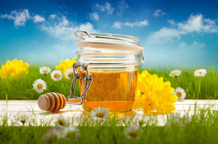 Healing Powers of Honey