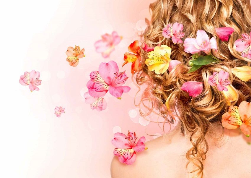 Best Herbs for Hair Growth