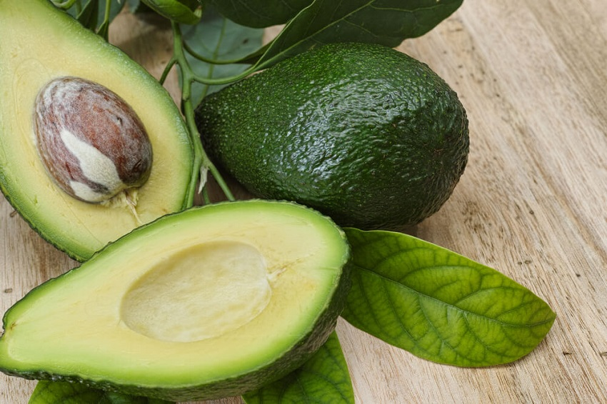 Grow Avocado Tree from Pit
