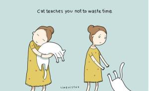 owning-a-cat-funny-illustrations-8