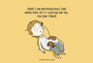 dog owner illustrations