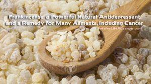 Frankincense Essential Oil Benefits Depression