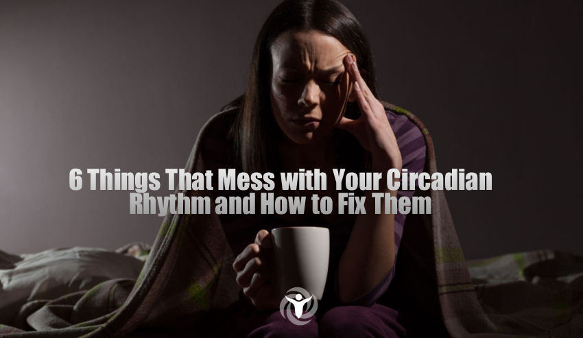 Your Circadian Rhythm 2