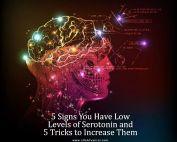 Low Levels of Serotonin