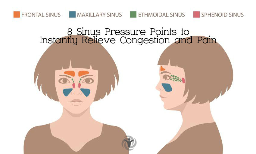 Image result for sinus pressure points