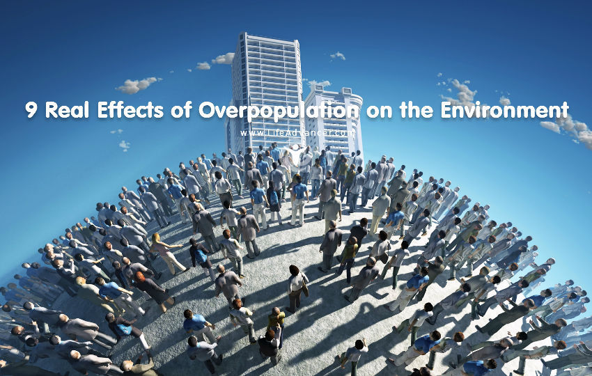 Effects of Overpopulation on the Environment