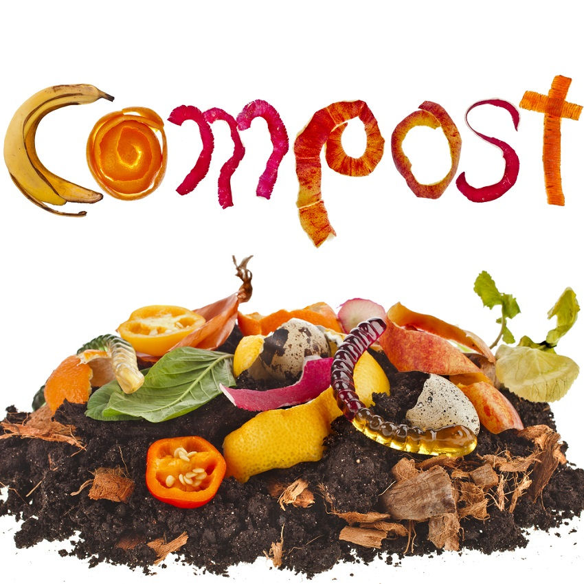 What to put into the compost