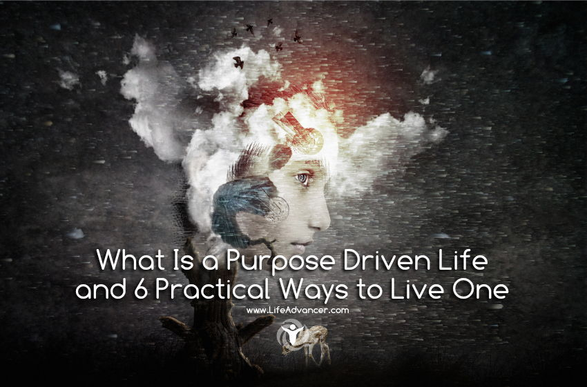 What Is a Purpose Driven Life
