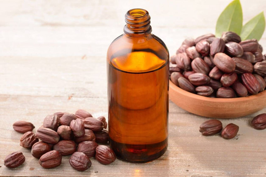Jojoba Oil Benefits for Your Health and Beauty