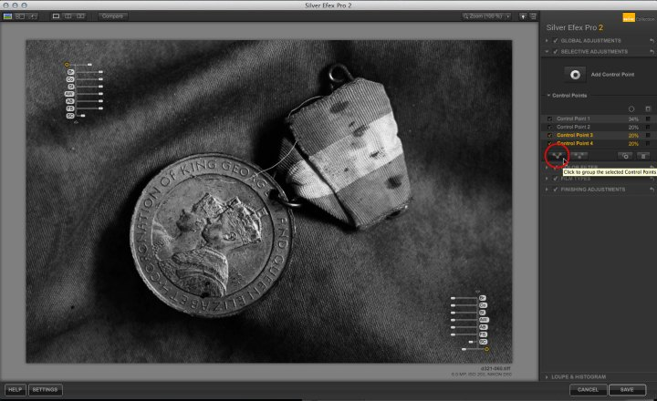 Nik Software Silver Efex Pro control points