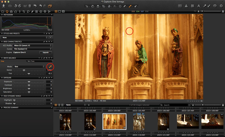 Capture One copy adjustments