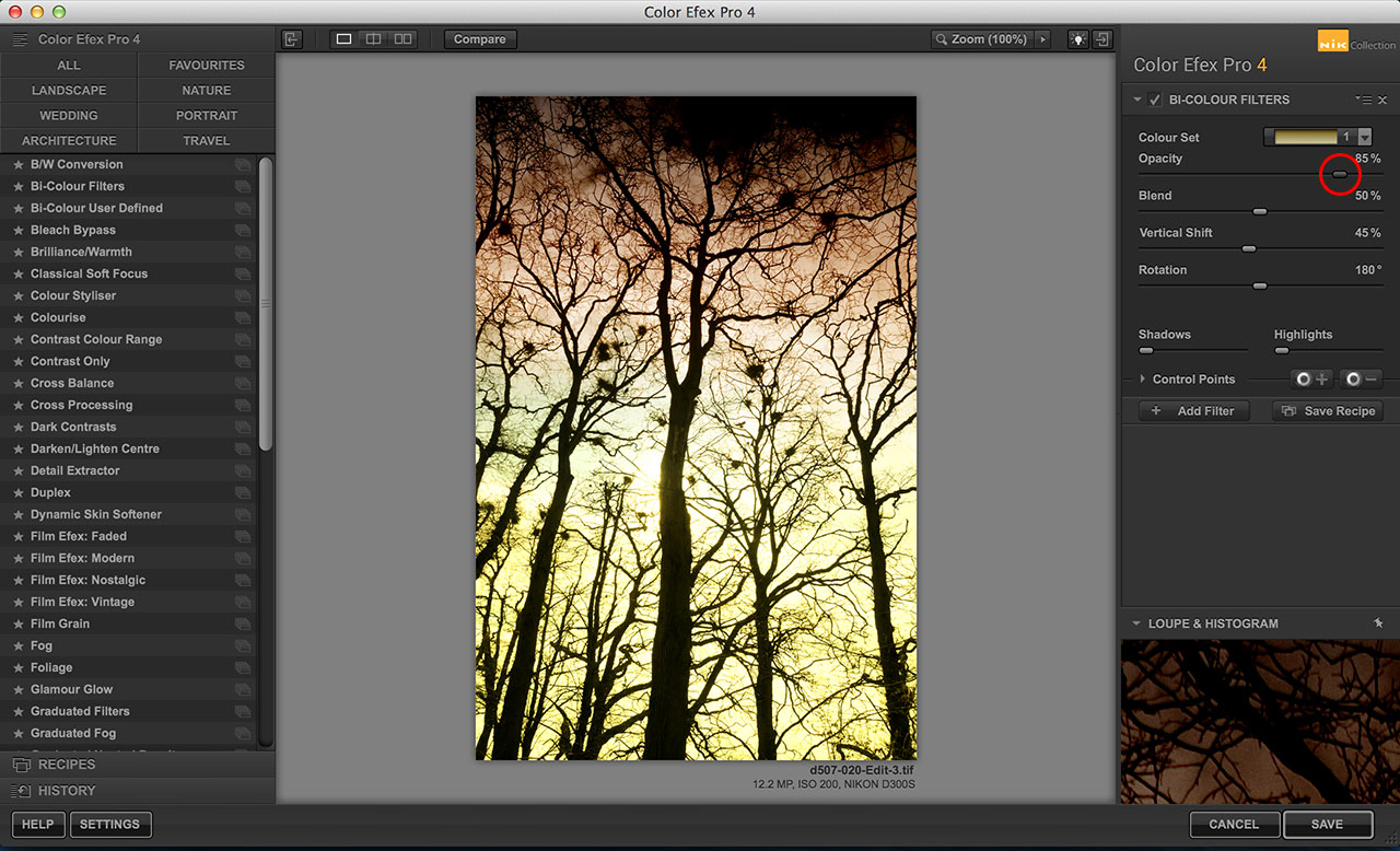 Google Nik Collection Color Efex Pro Bi-Colour filter