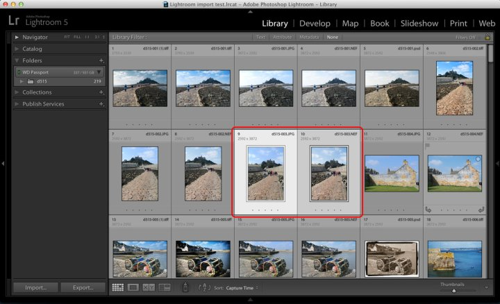 Lightroom RAW+JPEG pairs