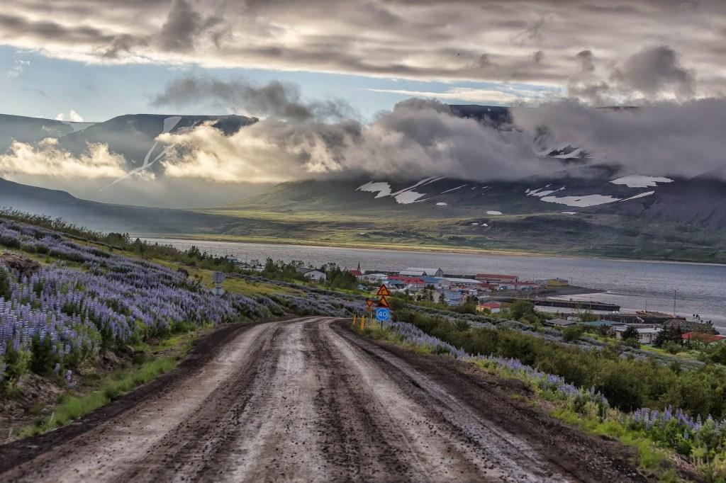 Back to Þingeyri