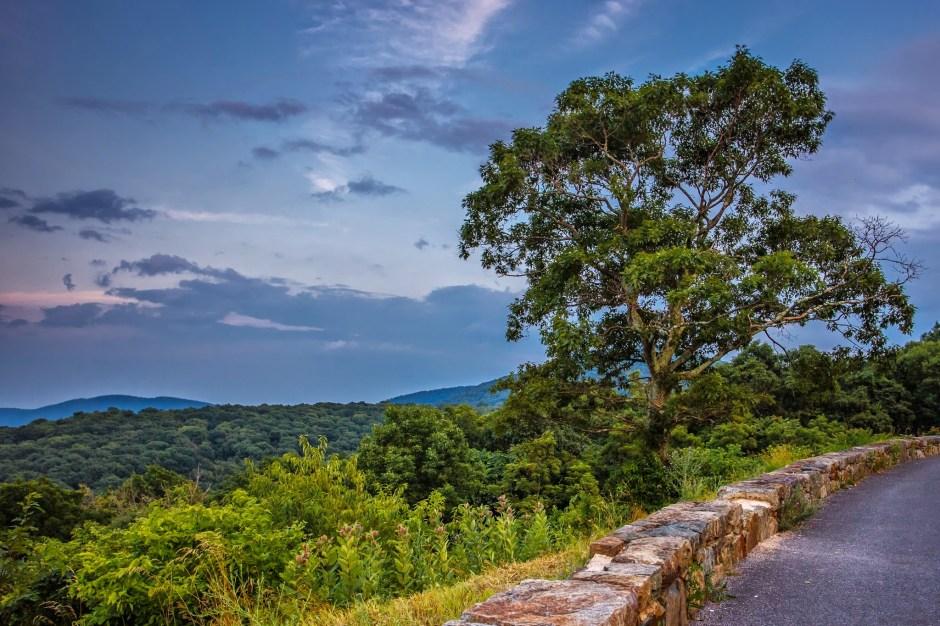 Thorton Hollow Overlook
