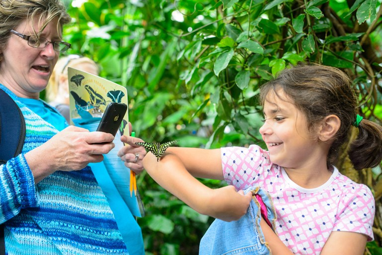 Woman holding a butterfly id guide takes a picture of girl with a butterfly on her elbow.