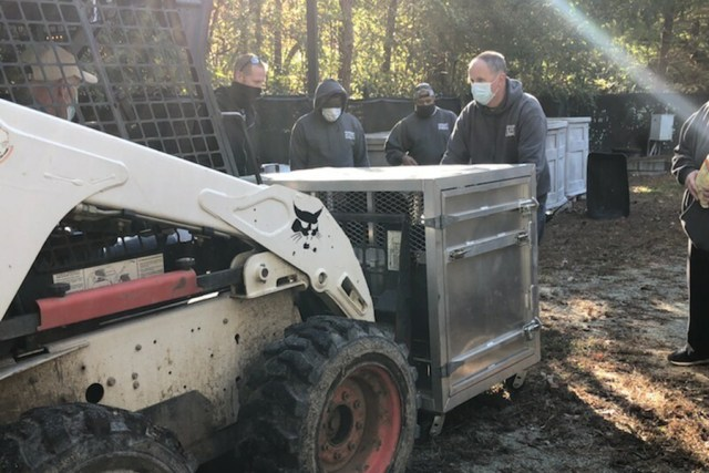 Tractor like construction equipment called a Bobcat lifts bear crate