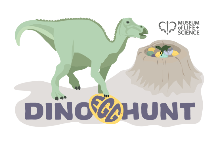 Dino Egg Hunt graphic