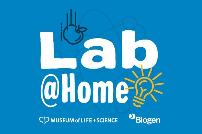 Lab@Home graphic 900x600