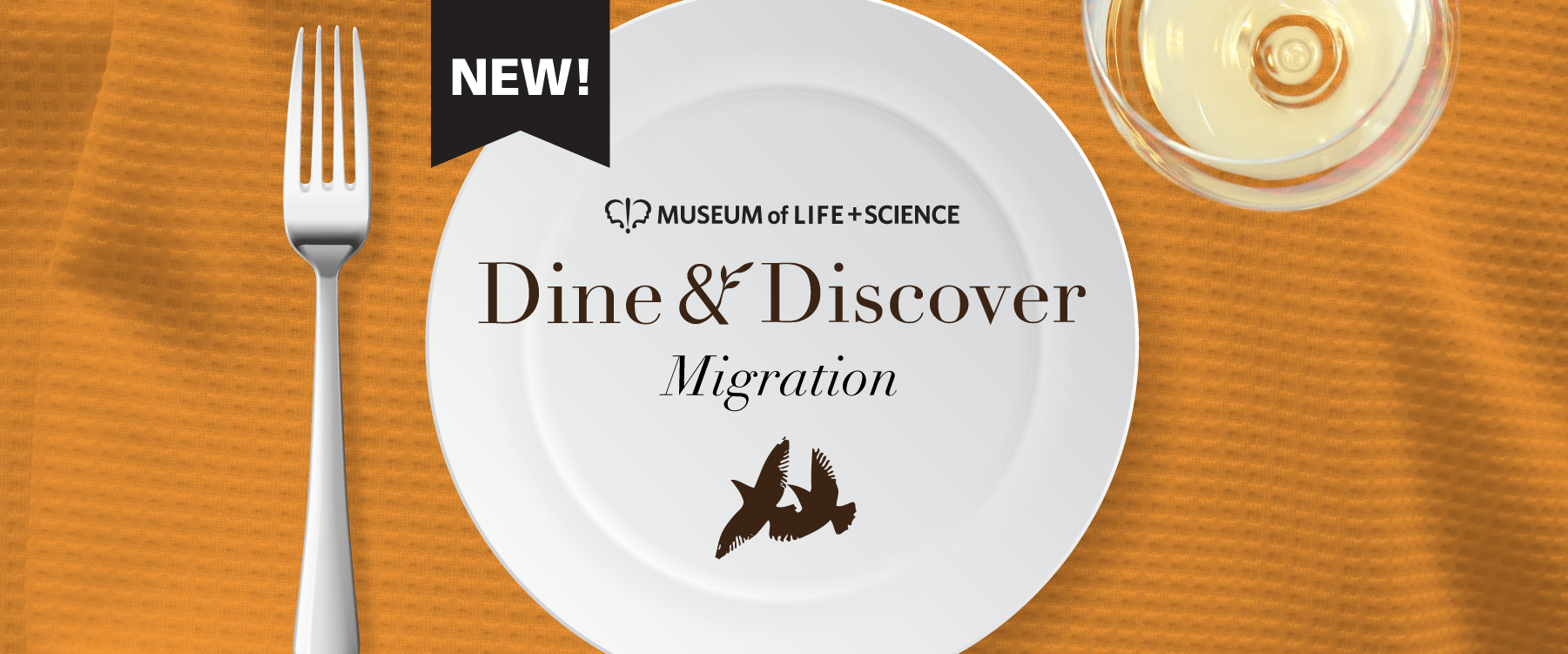 Dine and Discover Banner