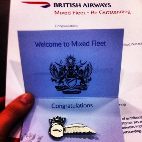 British Airways mixed fleet wings